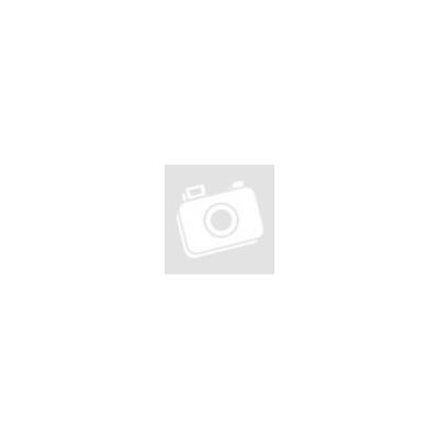Pet Zoom szőrkefe